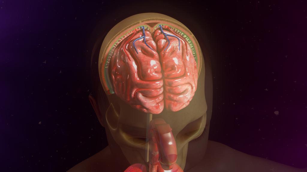 riscos-meningite