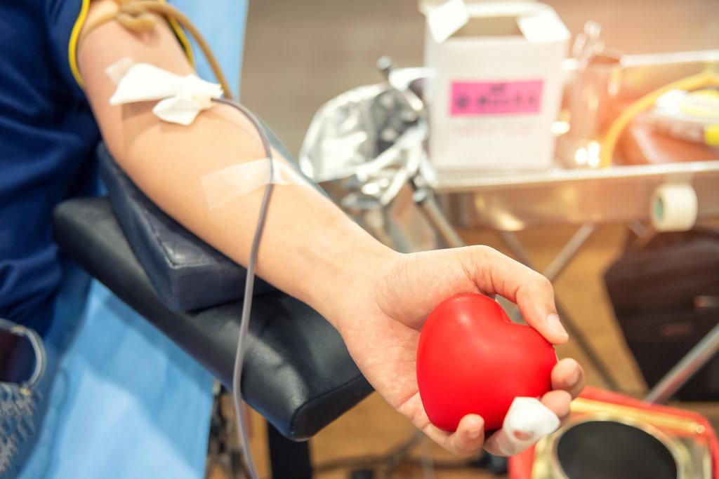 Doação de sangue pode trazer doenças? Veja 9 mitos e verdades sobre esse assunto